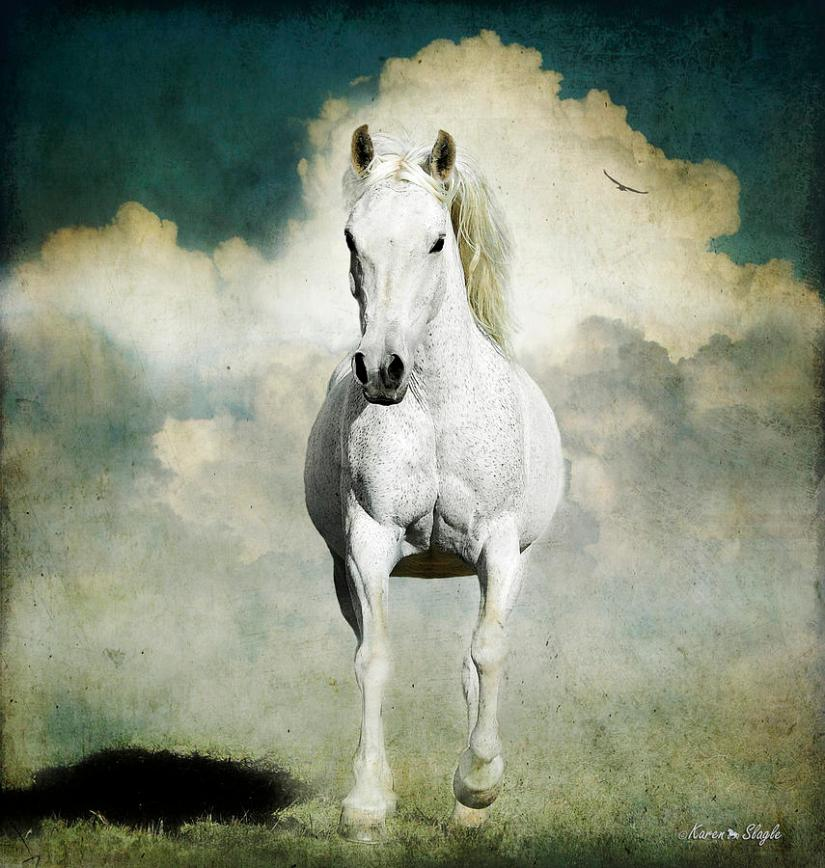 The difference between the two white horses and their riders in the book of Revelation